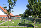Bild 3 Hundeschule & Hunde- und Katzenhotel FIRST CLASS am Kiekutsee R. Lütjohann