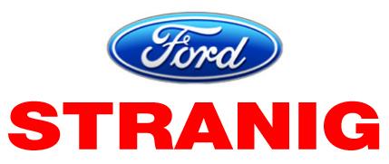 Bild von: Auto Stranig GesmbH, , Stranig-Ford Vertragswerkst, LKW-PKW-Reparatur