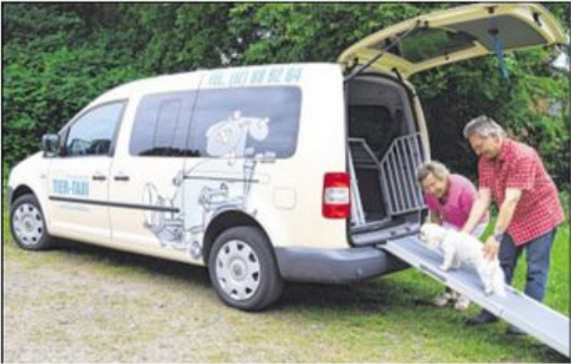 TAXI, Steinburger Tier Taxi, Kleintiertransporte u. Kurier