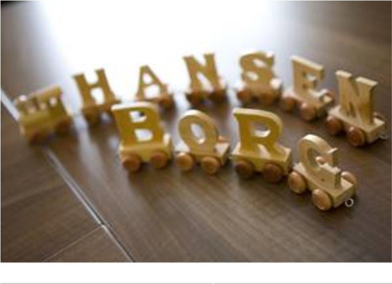 Hansen-Borg GmbH & Co. KG