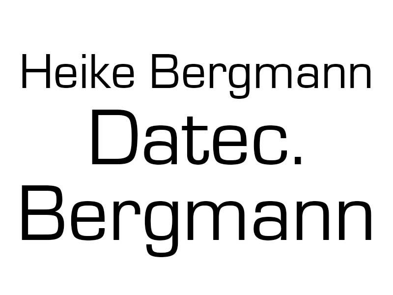 Datec Bergmann Buchen lfd. Geschäftsvorfälle