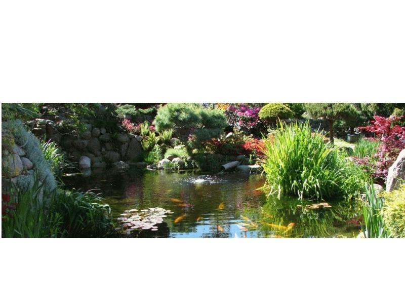 Garten- & Landschaftsgestaltung Schreck